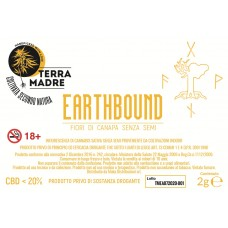 BARATTOLO 2GR TERRAMADRE EARTHBOUND